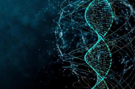 استفاده از DNA در تولید ربات ارزان برای درمان سرطان