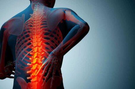کشف نوعی داروی جدید برای درمان پوکی استخوان